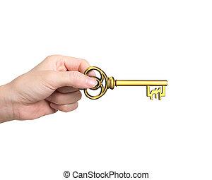 goldenes, pfund, schlüssel, symbol, schatz, hand, form, besitz
