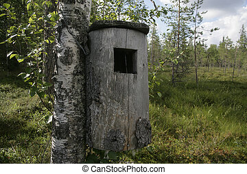 Goldeneye nest box on tree in Sweden