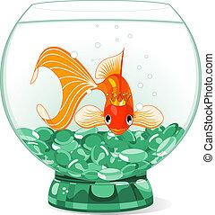 goldfisch, königin, karikatur, aquar