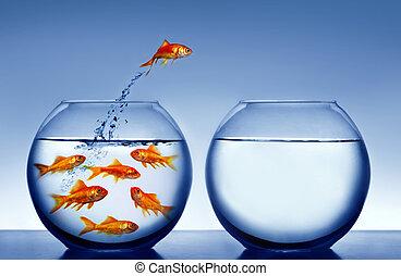 goldfisch, springende , t, heraus