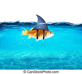 Goldfish acting as shark to terrorize the enemies. Concept...