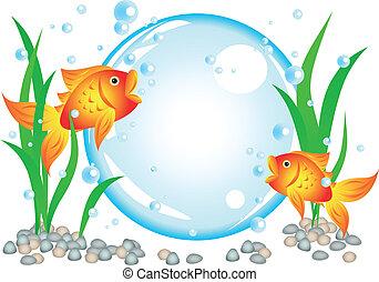 goldfish, anuncio