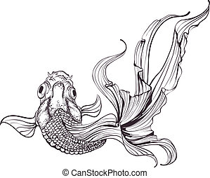 goldfish, bosquejo, fondo blanco