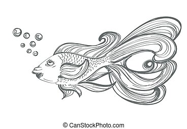 goldfish drawing on white
