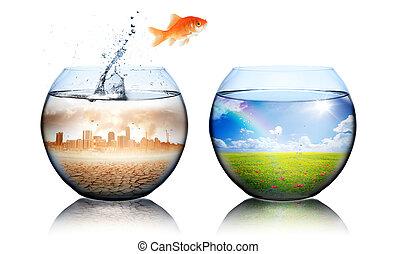 goldfish, -, efeito estufa, conceito