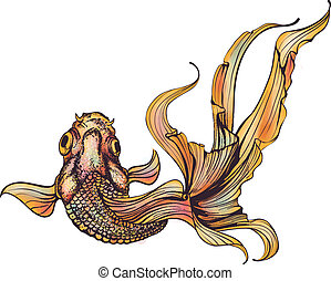 goldfish, fondo blanco