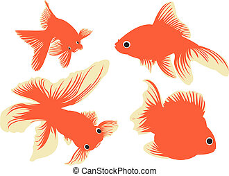 Goldfish. - Goldfishes in silhouettes.