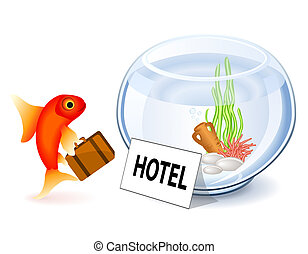 Goldfish Hotel - Goldfish arriving at the hotel