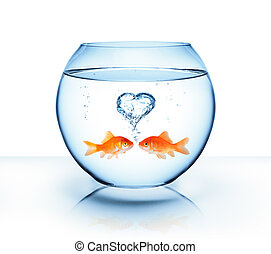 goldfish in love - romantic concept