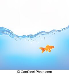 Goldfish In Water - Goldfish Swimming In Water, Vector...