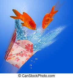 Goldfish Jumping.