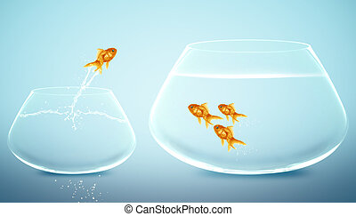 goldfish jumping into bigger fishbowl.