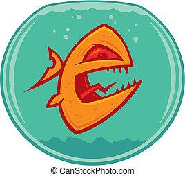 goldfish, medio