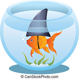 goldfish, tiburón, tazón