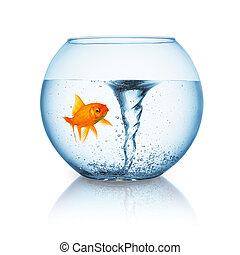 goldfish with twister in a fishbowl