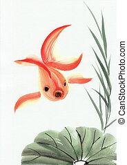 goldfishe, licencia, loto