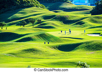 golf, agradable, club, verde