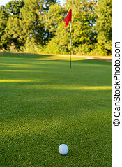 Golf Ball and Flag on the Green of a Golf Course
