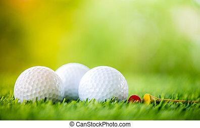 golf ball and tee on fairway