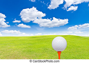 golf ball and tee on green grass
