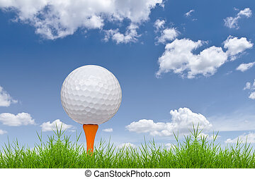 golf ball and tee on tall grass