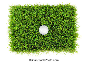 golf ball from above