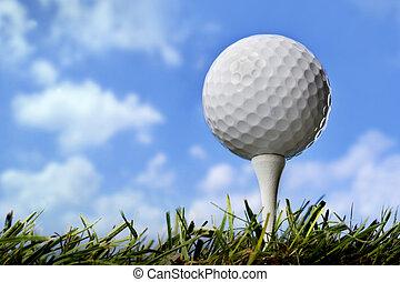 Golf ball in grass, close up