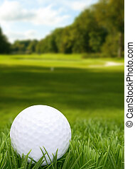 Golf Ball in Grass -  Golf Course in Background