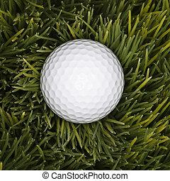 Golf ball in grass.