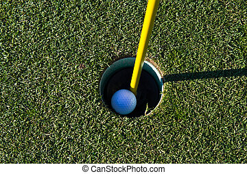 Golf ball in the cup