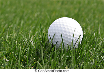 Golf ball in the field