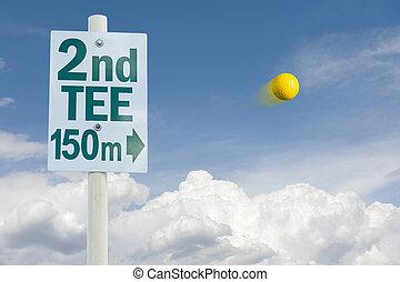 Golf ball in the flight