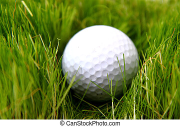 golf ball in the green grass