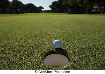 golf ball in the hole - golf ball on edge of course hole...
