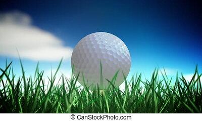 Golf ball loop