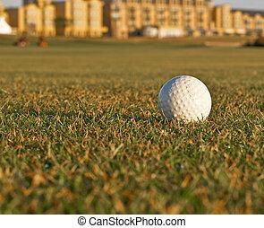 Golf ball lying on fairway.