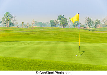 golf ball near hole on green with yellow flag