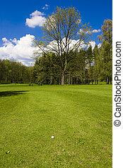 golf course - golf ball on a fairway of a golf course