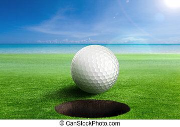 Golf Ball on edge of the hole.