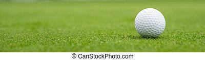 golf ball on green, banner