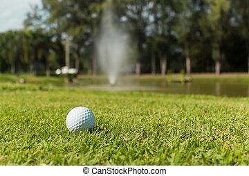 Golf ball on green grass background