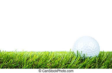 Golf ball on green grass over white background