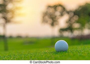Golf ball on green grass ready to be shot at golfcourt
