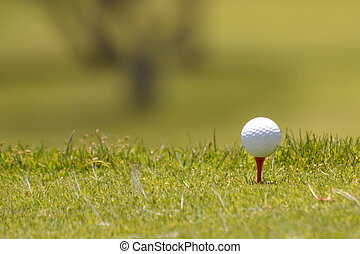 golf ball on t at the edge of grass