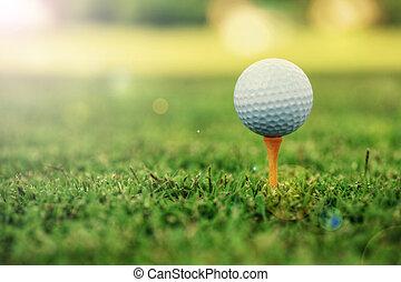 Golf ball on tee - Golf ball standing on tee