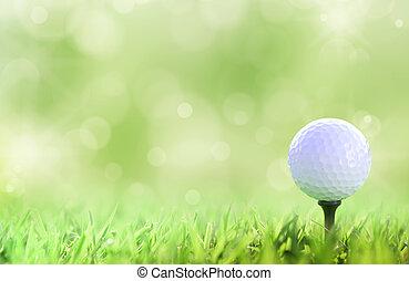 Golf ball on tee over a green