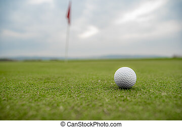 golf ball on the golf course before hitting the pit