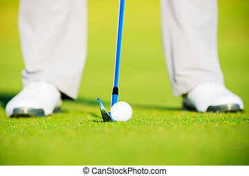 Golf Ball on the Grass