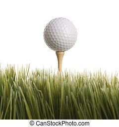 Golf ball resting on tee. - Studio shot of golf ball resting...