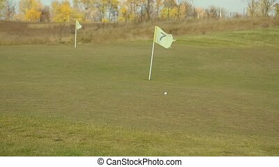 Golf ball rolls on the golf field
